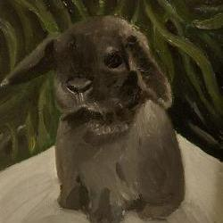 Bunny Rabbit Mini Lop Fine Art Print - &quot;Baby goes on a picnic&quot;